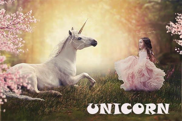 pengertian unicorn dalam startup lentera bisnis
